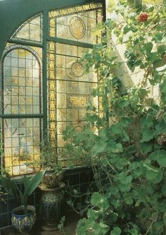 Beauty greenhouse - stained glass and what appear to be enormous wild geraniums?