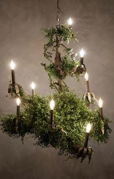 amazing moss chandelier #anthrofave http://rstyle.me/n/r2srrr9te