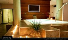 One heck of a bathtub... and with the TV, there would never, ever be a reason to leave. I've seen one like this but with a fireplace under the TV that was open to the master bedroom on the other side!