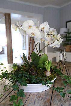 Advent, Sweet Home, Art Deco, Bouquet, Vase, Garden, Flowers, Plants, Christmas