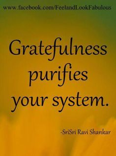 Gratefulness purifies your system- Shri Ravi Shankar.   However when we choose to live with Entitlement and Envy it poisons you spirit, so I choose to be a friend from afar and send you prayer.