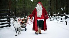 Santa Claus prepares a reindeer and sled in Lapland. Picture: AFP