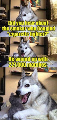 Haha thats a funny one doggo! - Funny Husky Meme - Funny Husky Quote - Haha thats a funny one doggo! The post Haha thats a funny one doggo! appeared first on Gag Dad. Pun Dog Meme, Bad Pun Dog, Funny Dog Jokes, Puns Jokes, Corny Jokes, Crazy Funny Memes, Really Funny Memes, Memes Humor, Funny Relatable Memes