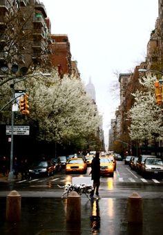 NY, en hiver
