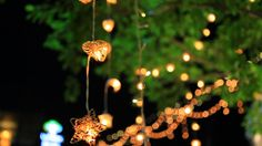 Image result for summer garden party night