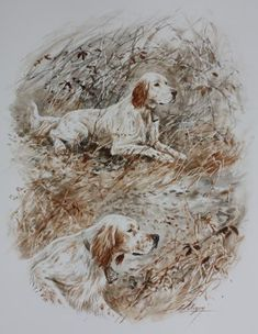 Dominique Pizon Hunting Art, Hunting Dogs, Hunting Pictures, Wood Burning Patterns, Vintage Dog, Hound Dog, Wildlife Art, Dog Art, Animals And Pets
