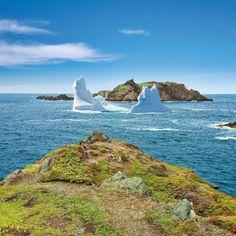 Iceberg at Crow Head, Newfoundland & Labrador, Canada Newfoundland Canada, Newfoundland And Labrador, Fjord, Top Destinations, Fishing Villages, Canada Travel, East Coast, Countryside, Tourism