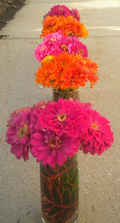 Zinnias in a centerpiece Replace with rustic fall colors for fall wedding