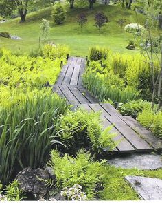 Perhaps a raised pathway through the bog garden would work and plant boggy plants through the ditch: