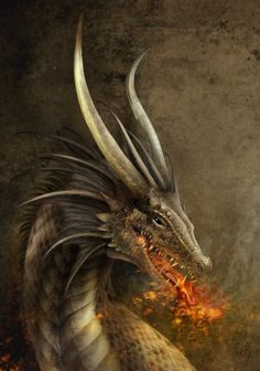 The Dragon by ~TheOutcast1821 on deviantART
