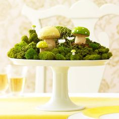 Cake stand with various mosses and toadstools