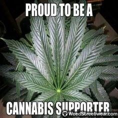 Posts about Cannabis-HEMP written by galactichuman