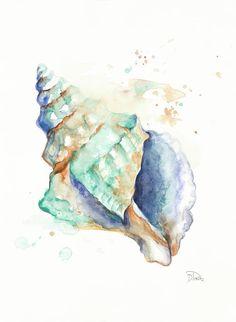 Art Print: Blue Shell by Patricia Pinto : Seashell Painting, Seashell Art, Blue Painting, Watercolor Ocean, Watercolor Paintings, Watercolour, Shell Drawing, Posca Art, Sea Life Art
