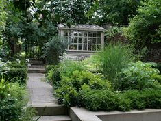 Notting Hill garden by The Land Gardeners