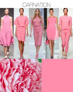 TREND COUNCIL SS 2014- CARNATION