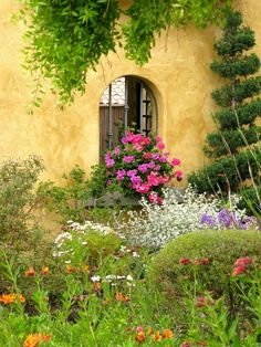 ♥ The House Color & Garden Wall