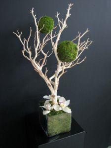Manzanita branches with green moss balls centerpiece Diy Arts And Crafts, Creative Crafts, Moss Art, Modern Flower Arrangements, Air Plant Terrarium, Branch Decor, Deco Floral, Vase Centerpieces, Dried Flowers