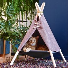 The Adventure Tent is a super fun cat bed, cat hammock, and cat tent in one modern pet friendly design. Made in Canada by Tinker. Cat Teepee, Cat Tent, Cat Hammock, Cat Kennel, Do It Yourself Design, Adventure Cat, Cat Room, Pet Furniture, Pet Beds