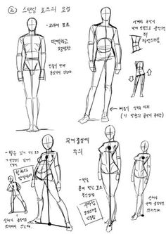 Exceptional Drawing The Human Figure Ideas. Staggering Drawing The Human Figure Ideas. Body Reference Drawing, Human Figure Drawing, Body Drawing, Anatomy Reference, Art Reference Poses, Drawing Hair, Hand Reference, Drawing Practice, Anatomy Sketches