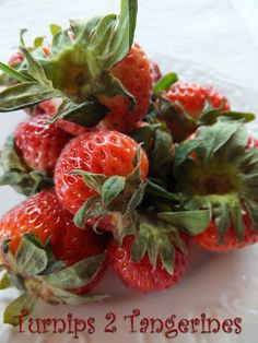 Turnips 2 Tangerines: How to Freeze Whole Strawberries