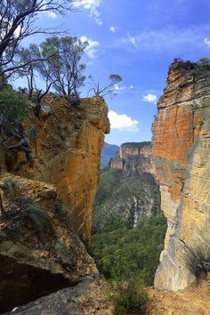 Burramoko Ridge, Blue Mountains, NSW. |