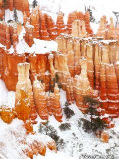 Winter at Bryce Canyon National Park, Utah – USA