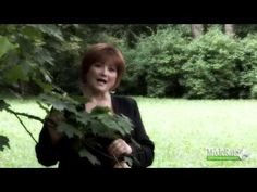 Marta Križanová: Mamin sviatok - YouTube Youtube, Youtubers, Youtube Movies