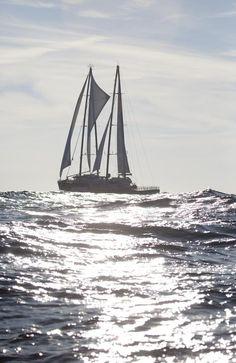 The new Rainbow Warrior sails in the Atlantic Ocean off North Carolina.  Photographer: Robert Meyers / Greenpeace