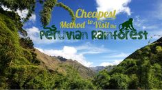 Peru Travel Tips l Cheapest Method to Visit the Peruvian Rainforest l @pariwanahostels