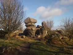 Winters day walk at Brimham Rocks #daysoutinyrokshire #yorkshire www.realyorkshiretours.co.uk
