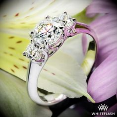 """Delicately crafted, this """"Trellis"""" 3 Stone Engagement Ring has clean flowing lines that intertwine to nestle your diamonds securely in place."""