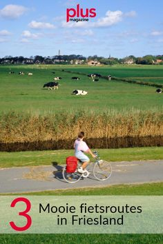 Cool Bikes, Netherlands, Holland, Abs, Hiking, Country Roads, Enchiladas, Travel, Outdoor
