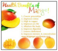 mango the king of fruits essay