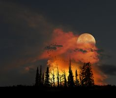 Moonrise, Colorado repin by Charlie Raymond...At the Gateway beteen Sun light...&... Moon light the enchanting comes alives and the Mythical Creatures come out  lurking about...?