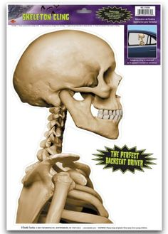 "Skeleton Backseat Driver Car Cling [180 Pieces] *** Product Description: Skeleton Backseat Driver Car Cling.Size:12"" X 17"" Sheet. Made In Usa. 1 Per Sheet.All Sales Final, No Returns. *** DDMA http://www.amazon.com/dp/B00O2ATFLE/ref=cm_sw_r_pi_dp_PckTub0KSZP09"
