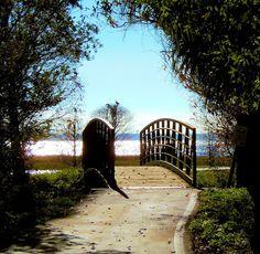 R. Mac Wheeler: Sunday Safari - Lake Parker, Lakeland, FL (Part 2)