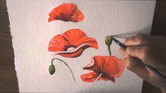 Démo aquarelle :les coquelicots (watercolor tutorial)