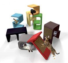 Modern Cat Furniture  Design for