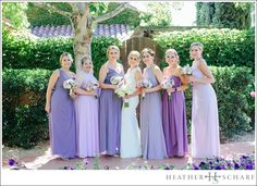 Vintner's Inn Wedding Photography – Santa Rosa, Ca Perfect Couple, Bridesmaid Dresses, Wedding Dresses, Wedding Photography, Weddings, Bridal, Couples, Fashion, Bridesmade Dresses