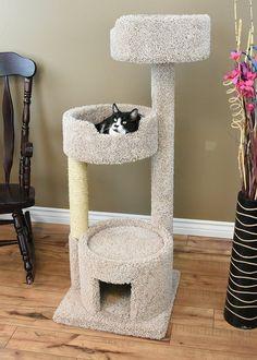 """New Cat Condos 52"""" Cat Tree & Reviews   Wayfair"""