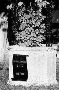 Rosetta Lenoire (1911 - 2002) Played Mother Winslow on the ... Rosetta Lenoire Funeral