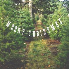 Merry Christmas Banner. Christmas Photo Prop.  Photo Booth, Photobooth, Photo Prop. $13.00, via Etsy.