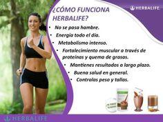 Consultor y Distribuidor: Jorge Valentín Cabezas email: mailto:jowaval@gm... #Herbalife #Salud #Nutrición