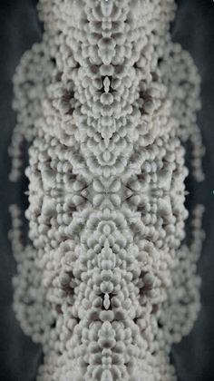 Shai Langen | Material Design