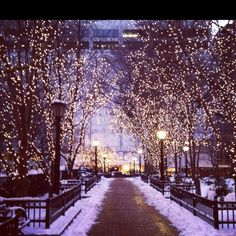 Seriously, nothing is prettier than Chicago at Christmas time! Winter Szenen, Winter Christmas, Christmas Lights, Christmas Time, Magical Christmas, Christmas Cards, Winter In Chicago, Chicago Christmas, Christmas In The City