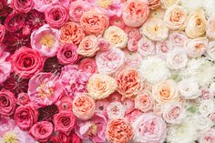 Styled Stock Photo, Ombre Flowers by Anna Delores on Creative Market Graphic Patterns, Cool Patterns, Apple Watch Wallpaper, Nursery Paintings, Creative Sketches, Pencil Illustration, Business Card Logo, Watercolor And Ink, Flower Wall