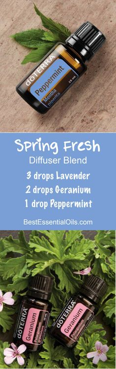 Spring Fresh doTERRA Diffuser Blend