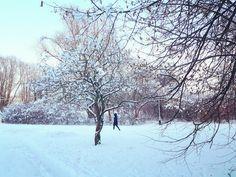 Goya: W śniegach