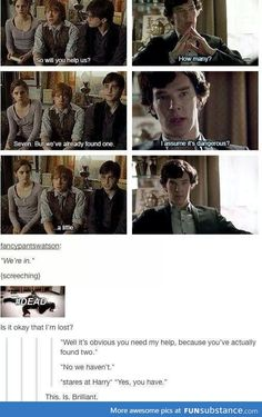 When Sherlock and Harry Potter collide the fandoms die. Harry Holmes or Sherlock Potter? Hogwarts, Sherlock Holmes, Sherlock Fandom, Funny Sherlock, Sherlock Otter, Sherlock Tumblr, Watch Sherlock, Sherlock John, Narnia