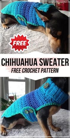 dog crocheted sweaters crochet Chihuahua Sweater free pattern - easy crochet sweater pattern for beginners Crochet Dog Sweater Free Pattern, Crochet Dog Patterns, Knit Dog Sweater, Knitting Patterns Free Dog, Pet Sweaters, Small Dog Sweaters, Crochet Dog Clothes, Crochet For Dogs, Free Crochet